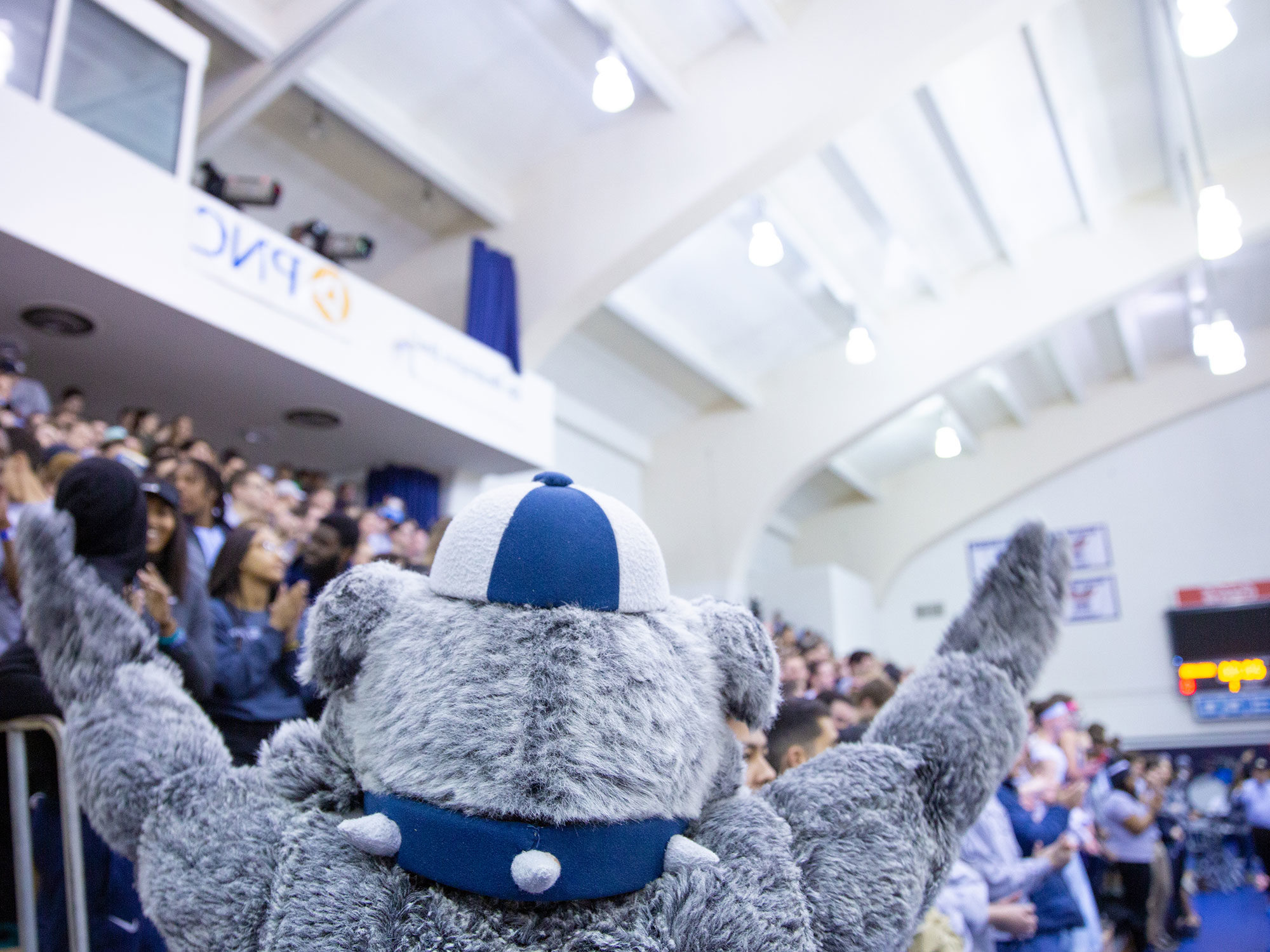 The mascot and crowd cheer during a basketball game.