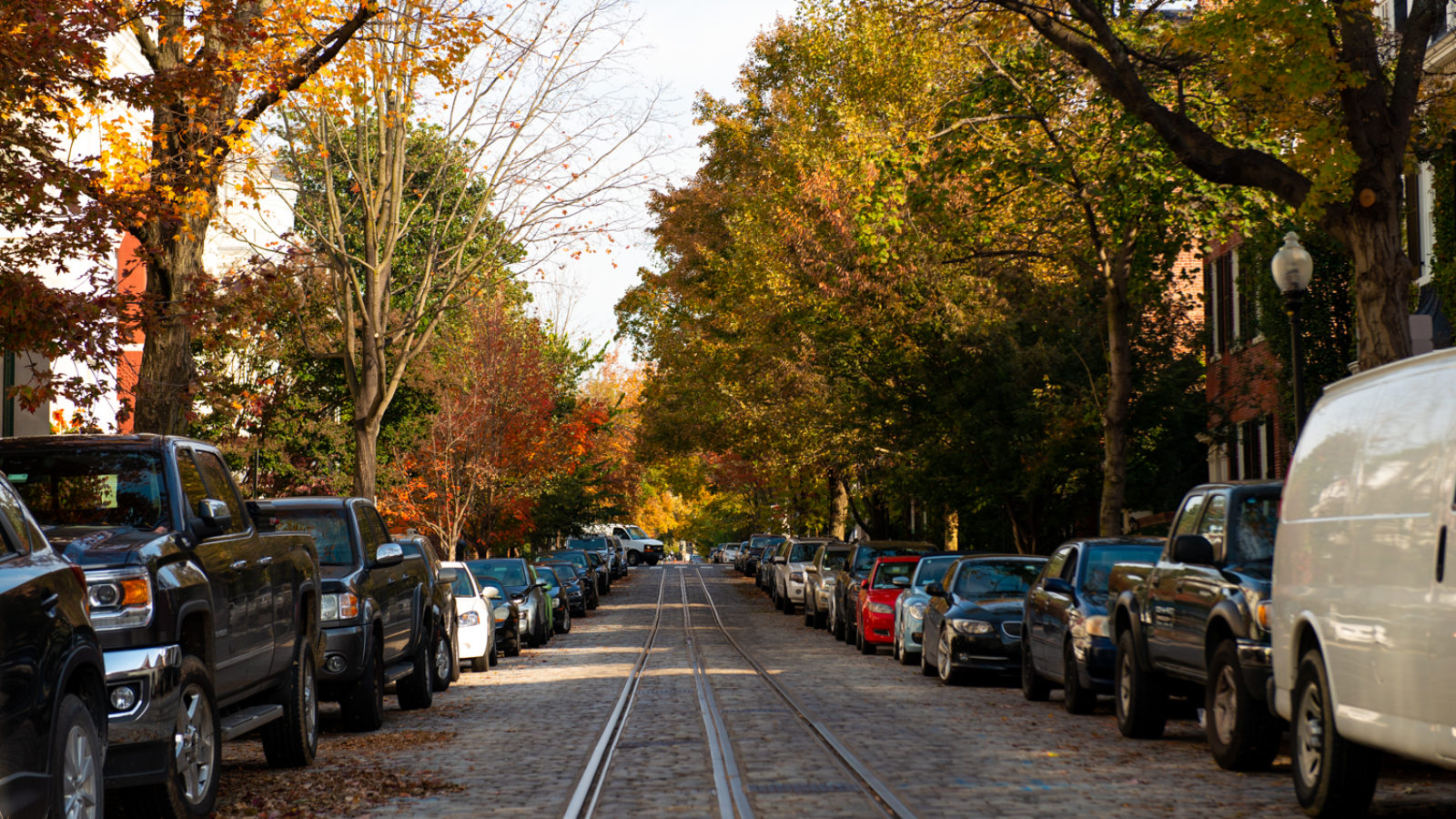 Autumn leaves color the leaves of trees that line a cobblestoned street in Georgetown with old train rails running down the middle of the street.