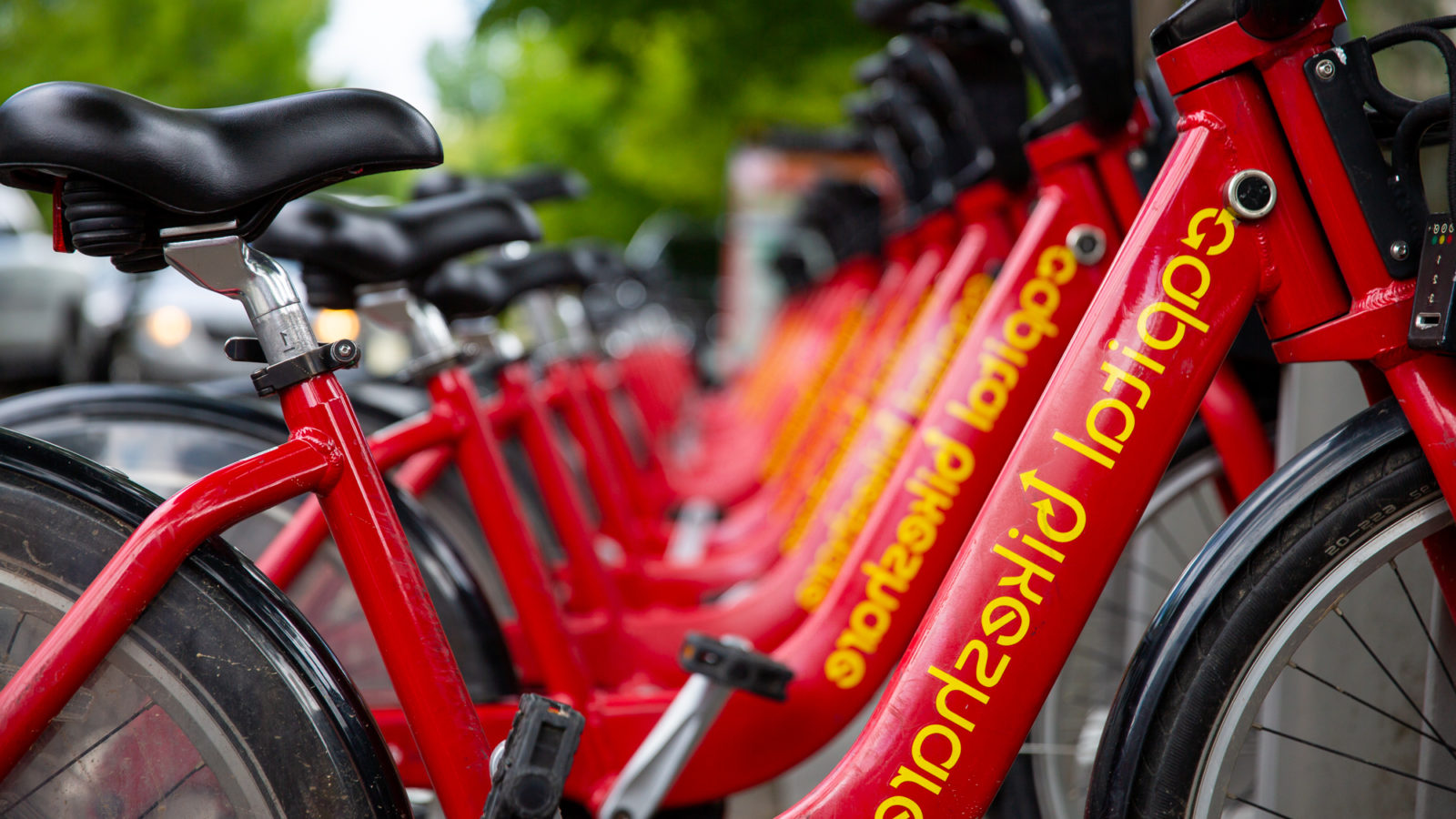 A row of red Capital Bikershare bikes stand neatly side by side.